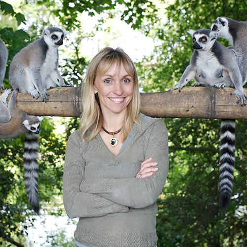 Michaela's Animal Road Trip