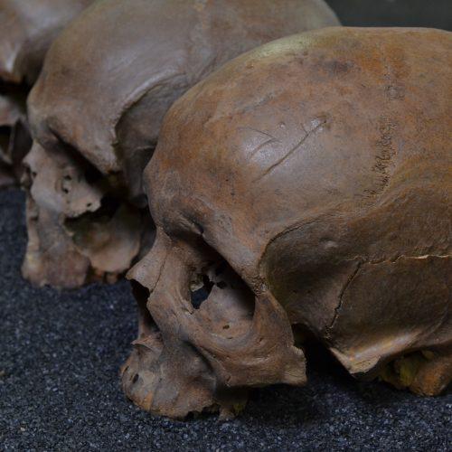 Mystery Of The Crossrail Skulls