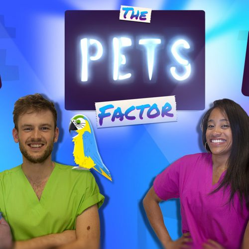 The Pets Factor - Series 2